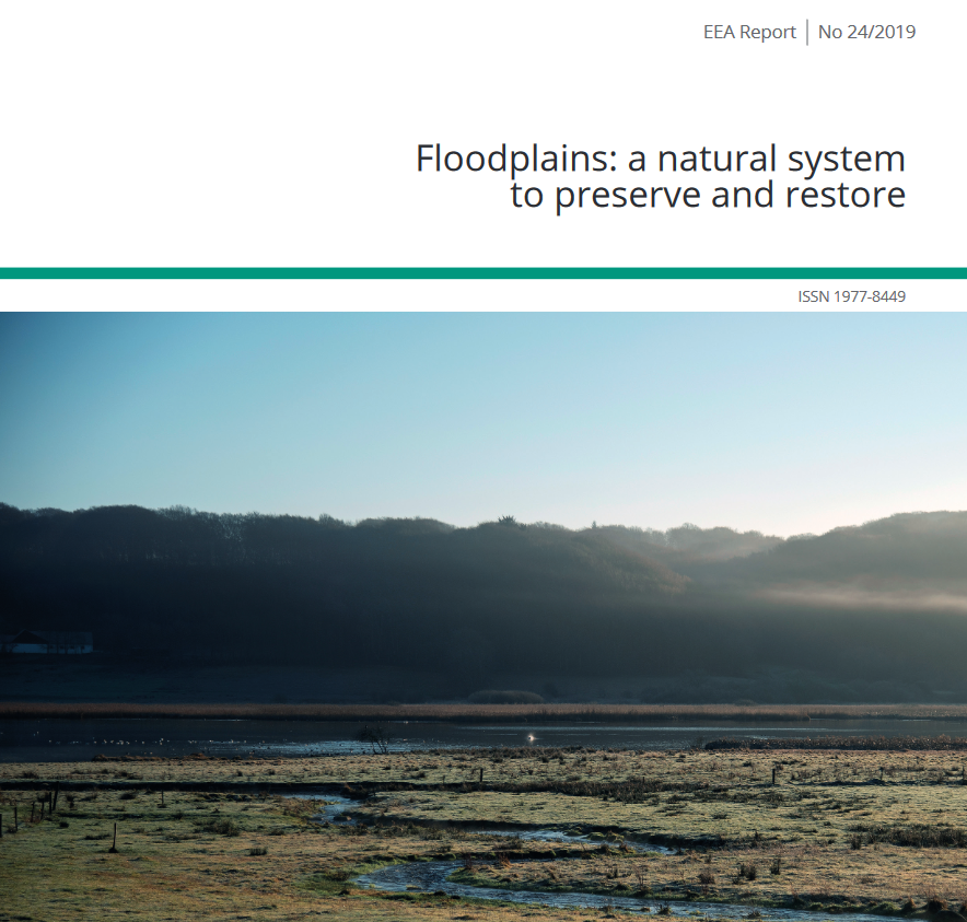 Floodplains: a natural system  to preserve and restore